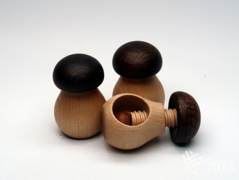 Louskáček na ořechy - houba
